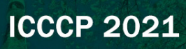 11th Intl. Conf. on Chemistry and Chemical Process--EI Compendex, Scopus