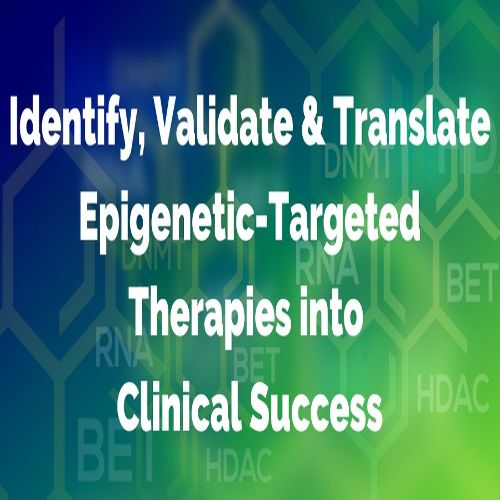 Epigenetic Therapeutic Targets Summit