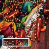 Echo Fiesta:  Adult Echo for Sonographers And Physicians