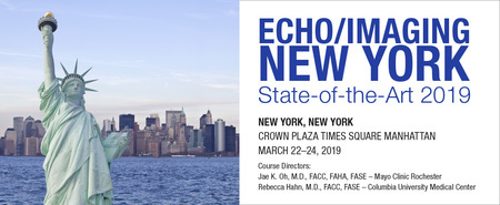 Echo/Imaging New York: State-of-the-Art 2019