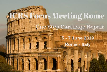 ICRS Focus Meeting Rome - One Step cartilage Repair