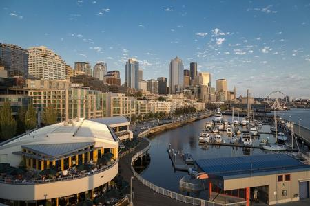 Fetal and Women's Imaging CME  | Advanced OB-GYN Ultrasound Seattle 2019