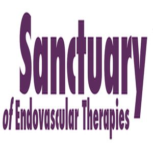 Sanctuary of Endovascular Therapies 2020